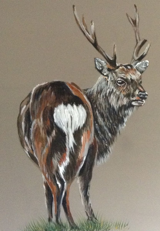 Monarch of the glen (Stag) 24 x 24 inch Acrylic on box Canvas - Image 0