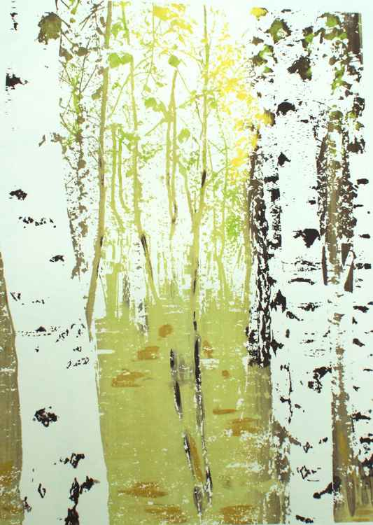 Birches in Spring ( also available in different seasonal colours) -