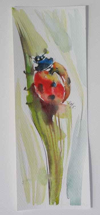 Ladybird II -