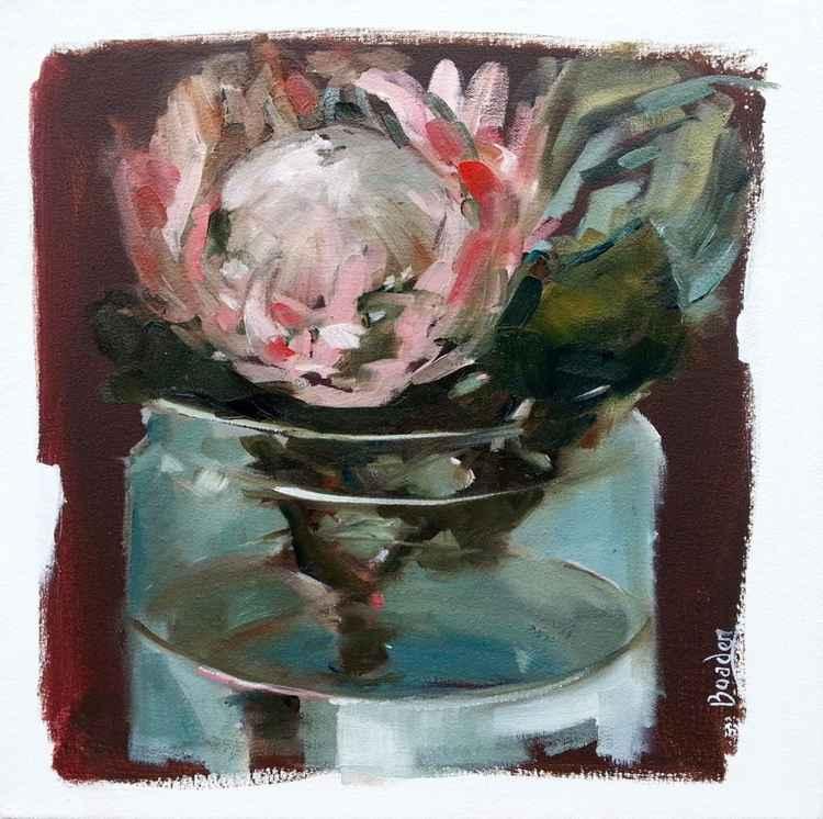 Protea in Glass Jar -