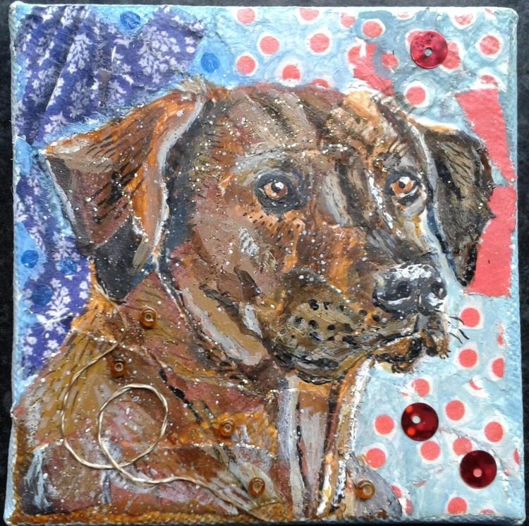Rhodesian Ridgeback Dog - Image 0