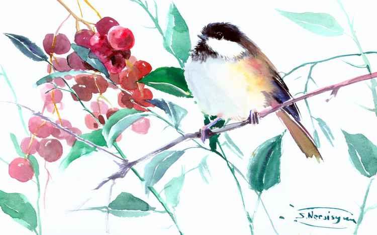 Chickadee -