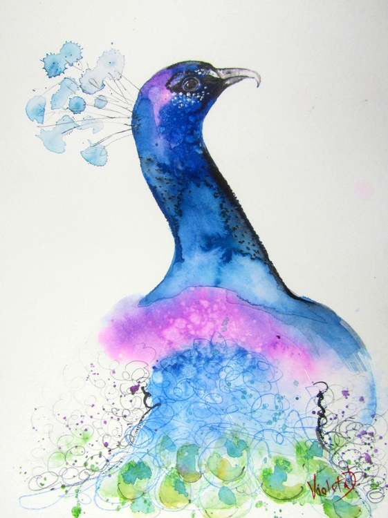 The Indian Peacock - Image 0
