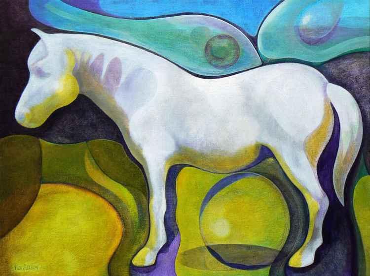 Welsh Pony Spirit