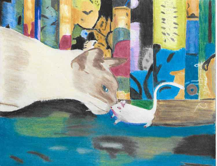 Cat and Mouse -