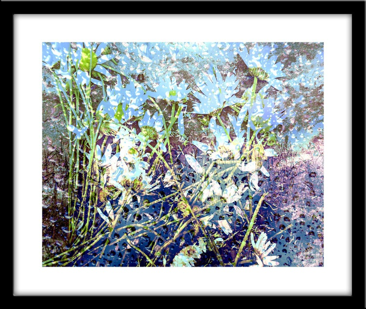 Bare feet meadow - Image 0