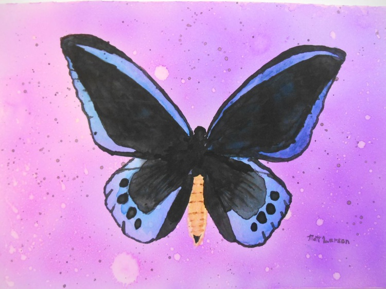 A Blue Butterfly - Image 0