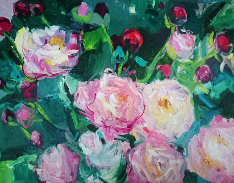 Peonies bloom - Image 0