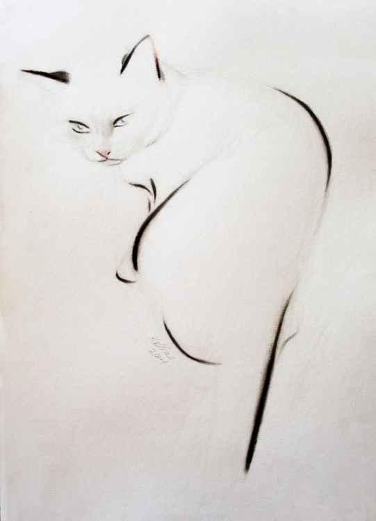 Crouching Cat -