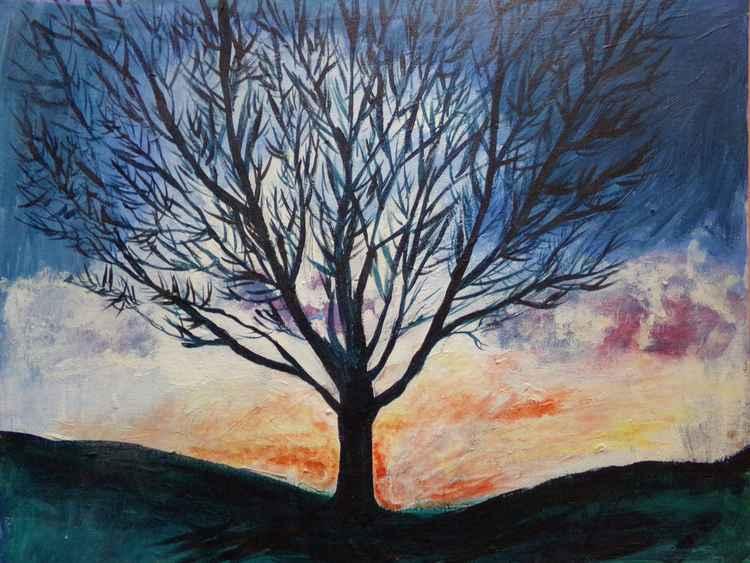 Tree in winter -