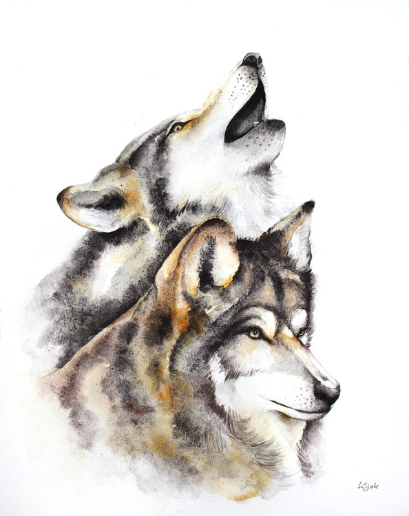wolves - animals, wildlife watercolour painting - Image 0