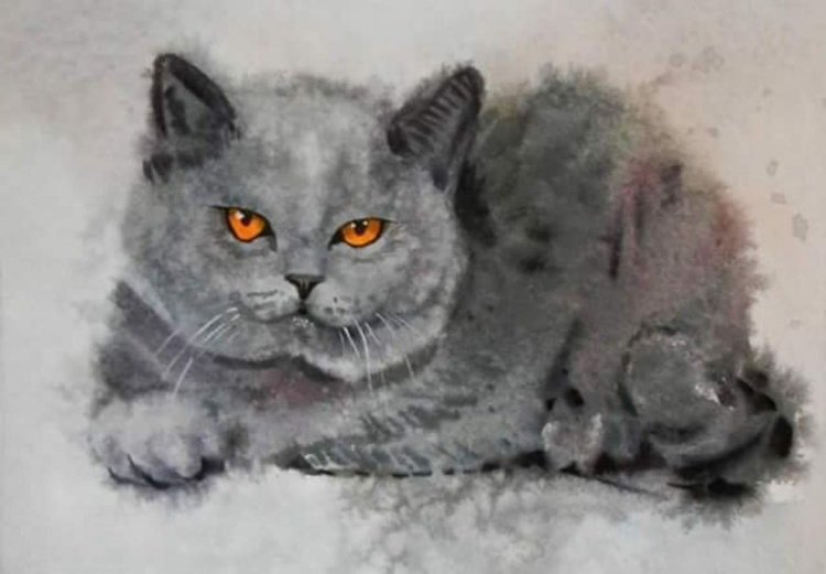 British kitten. original watercolor 30x21 cm - Image 0