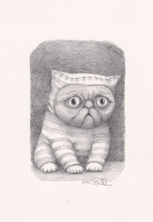 WEIRD CAT - Image 0