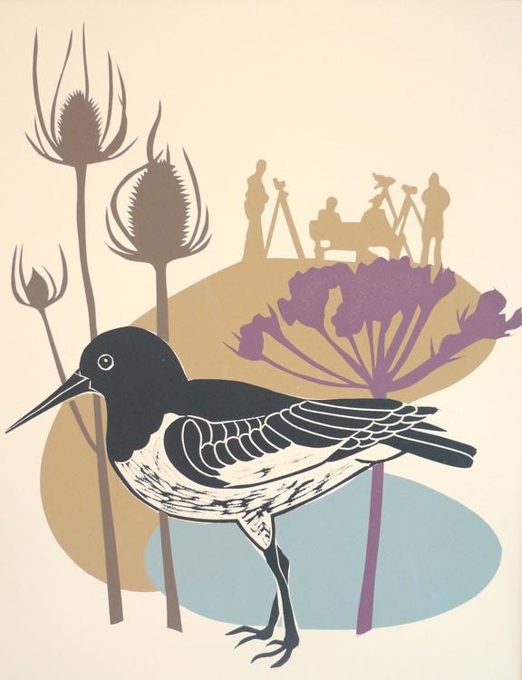 The Birdwatchers - Image 0