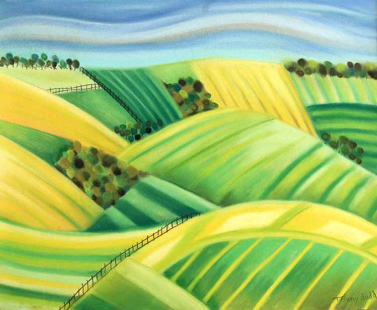 Harvest Fields -
