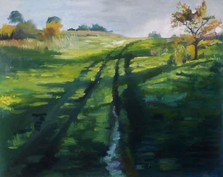Grassy Track -