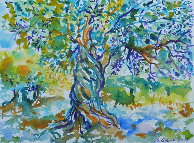 Magnificent olive tree - Image 0