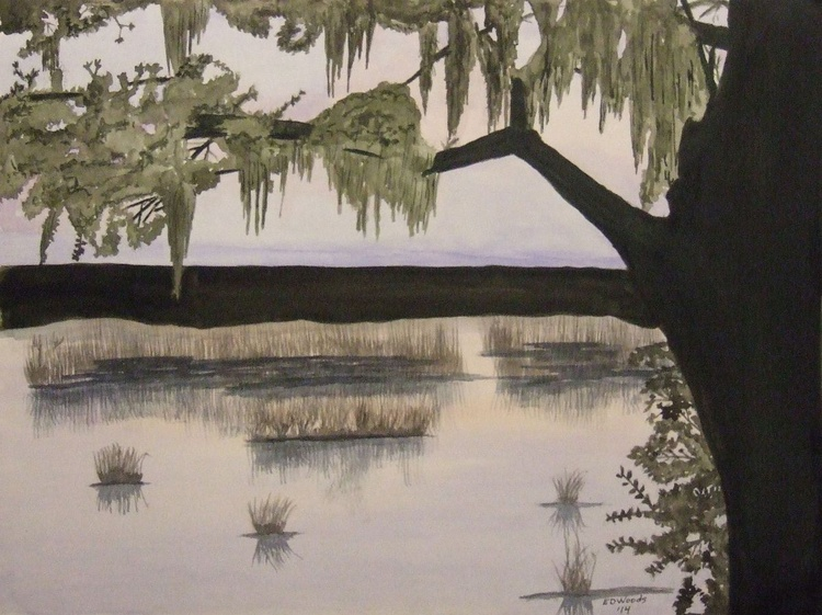Marsh Shadows - Image 0
