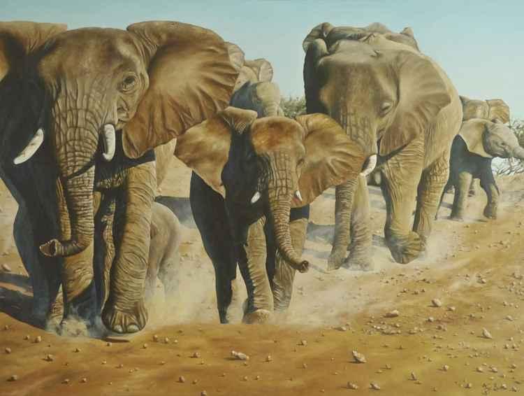 The herd -