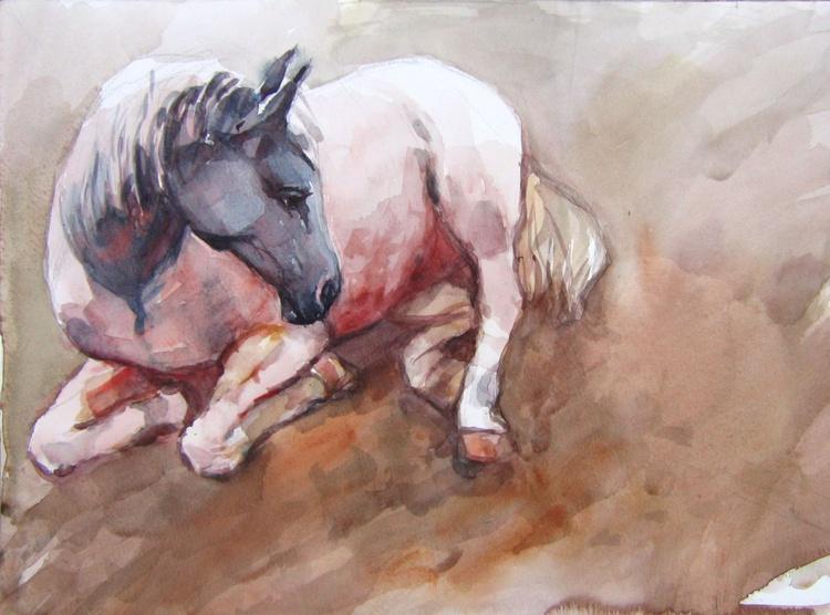 lying horse II - Image 0