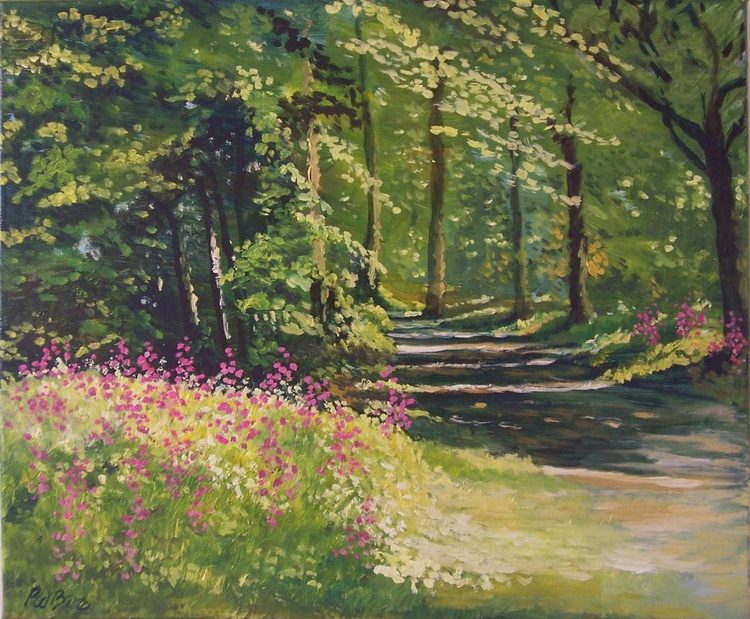 Pink Campion and path into the woods - Image 0