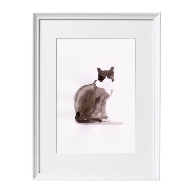 Bicolor cat - Image 0