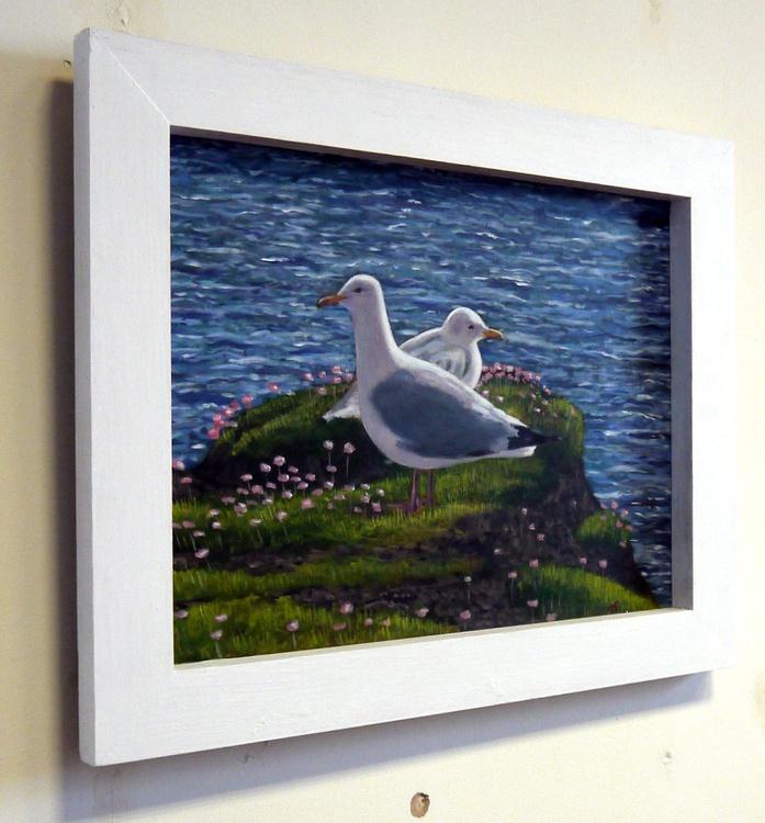 Nesting Herring Gulls near St Just - Image 0