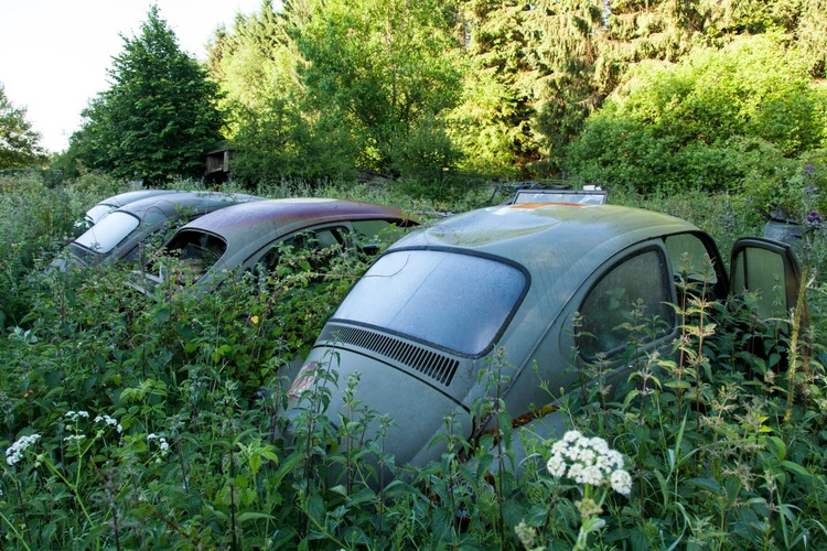 Abandoned graveyards cars #4 - Image 0