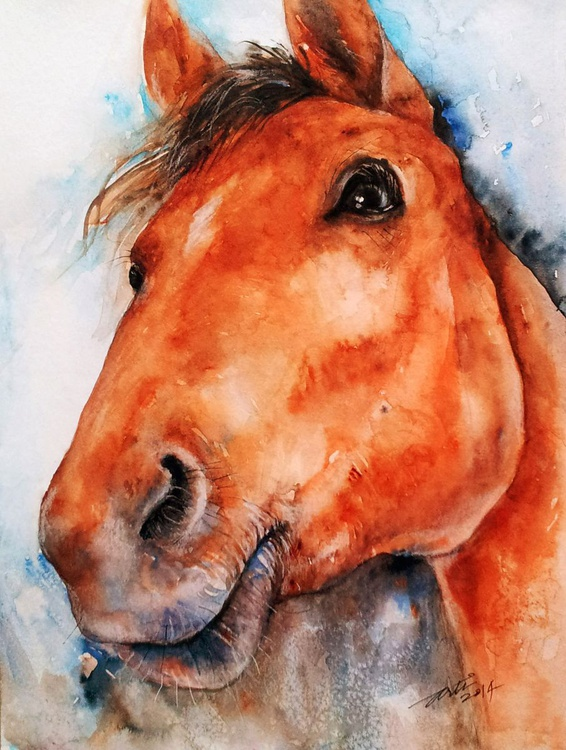 All Ears_The Brown Horse - Image 0