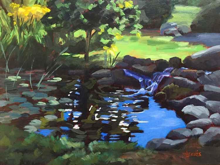 Lily Pond -