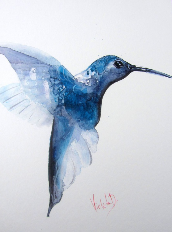 Hummingbird 16 - Image 0
