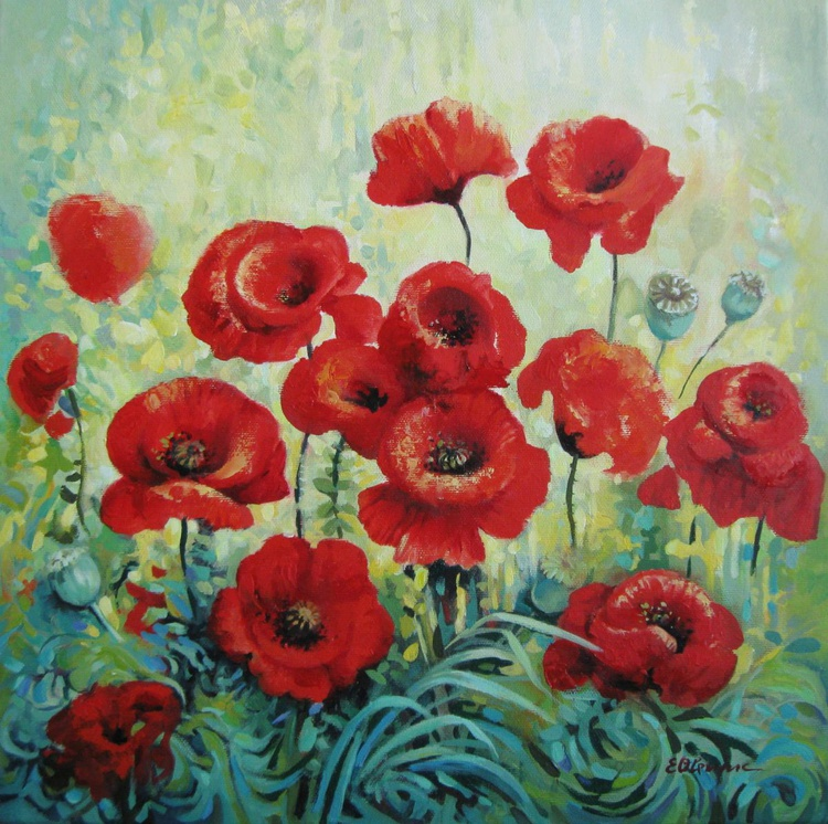 Field of red poppies - Image 0