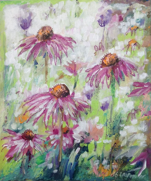 Echinacea meadow - abstract - Image 0