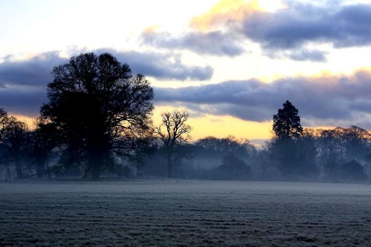 Dawn Walk in Ireland - Image 0