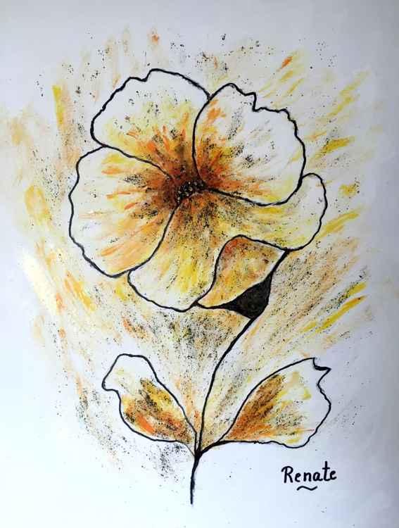 Poppy Art-flower