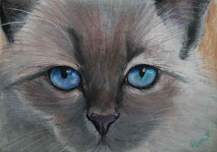 Laid Back Cat, pastel postcard art