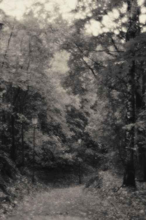 Dark Avenues -