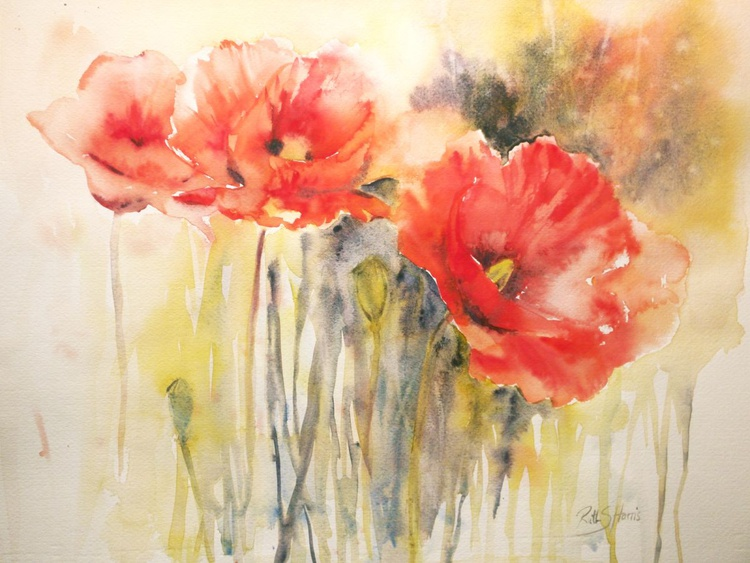 Wild Poppies - Image 0