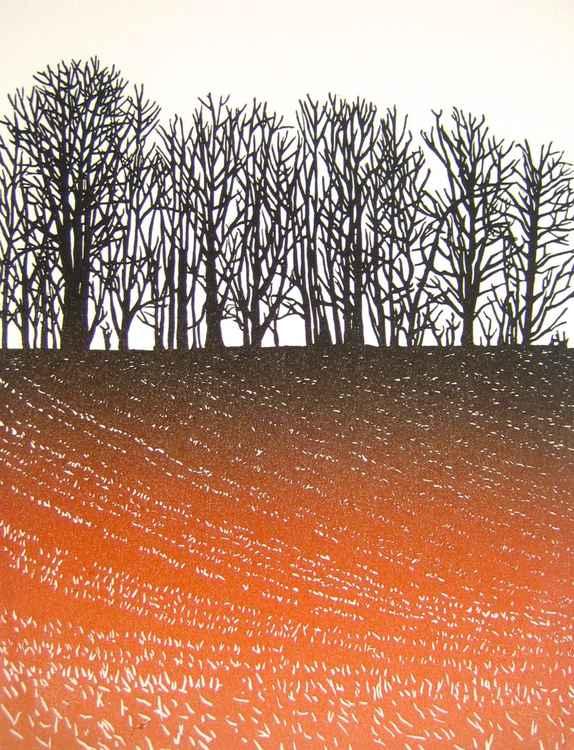 Winter Field I