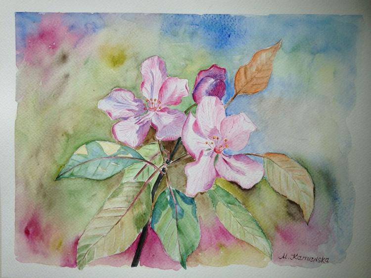 Original one of a kind watercolor artwork - Blooming pink apple tree branch - Image 0