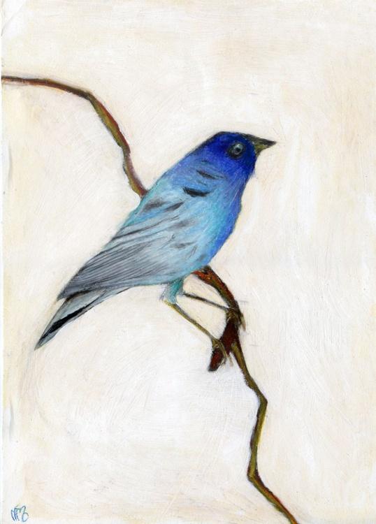Little blue - Image 0