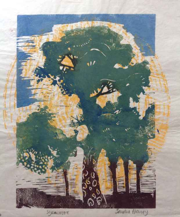 Sycamore linocut and woodblock -