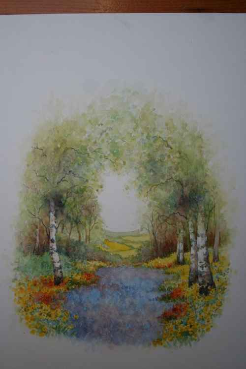 Silver Birches -