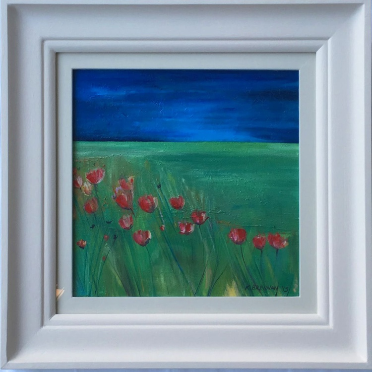 Wild poppies in Fife - Image 0