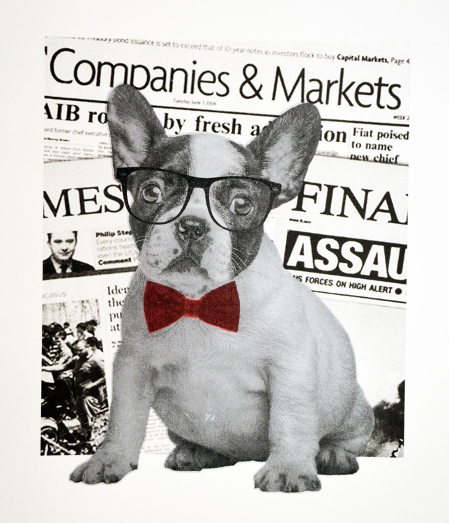 The dog of Wall Street - Image 0
