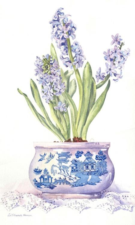 Spring Hyacinths - Image 0