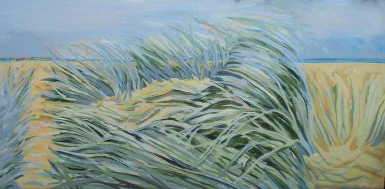 Marram Grass - Image 0