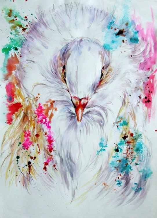 White pigeon / bird -