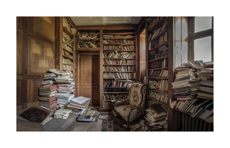 The Library - Image 0