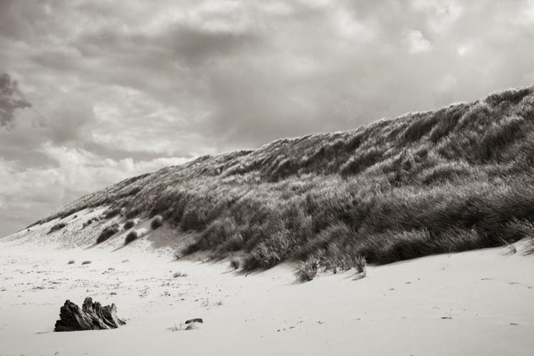 On The Beach 3 - Image 0